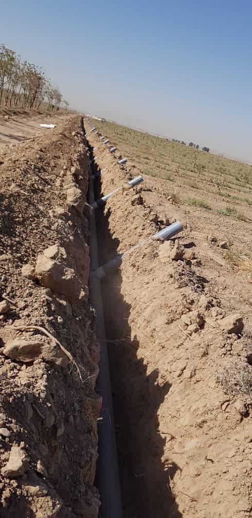 مزرعه 140 هکتاری پسته ورامین